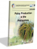 Palay Production in the Philippines