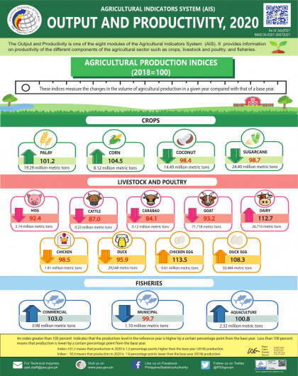 Agricultural Indicators System: Output and Productivity