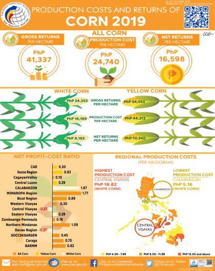 Production Costs and Returns of Corn, 2019