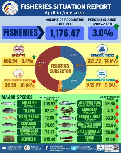 Fisheries Infographics