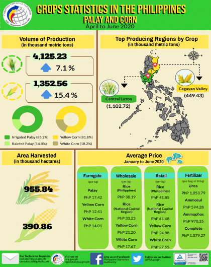 Palay and Corn Statistics, April to June 2020