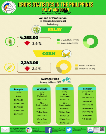 Palay and Corn Statistics, January to March 2020