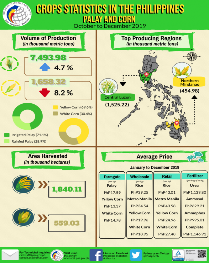 Palay and Corn Statistics, October-December 2019