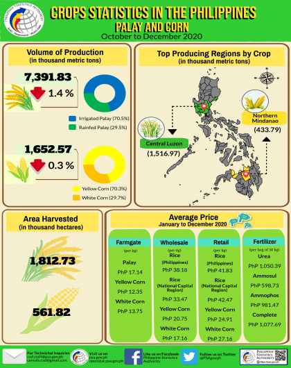Palay and Corn Statistics, October to December 2020