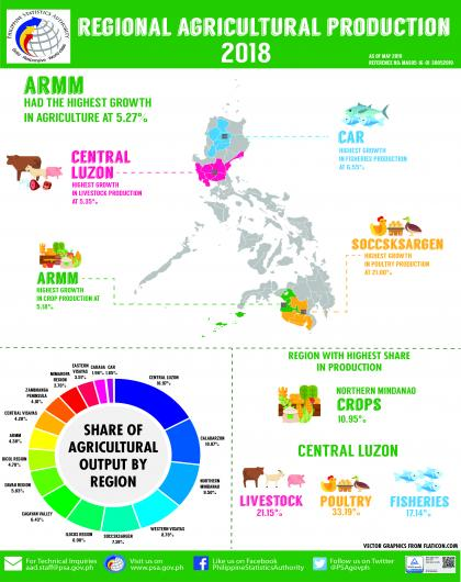 Regional Agricultural Production Accounts, 2016-2018